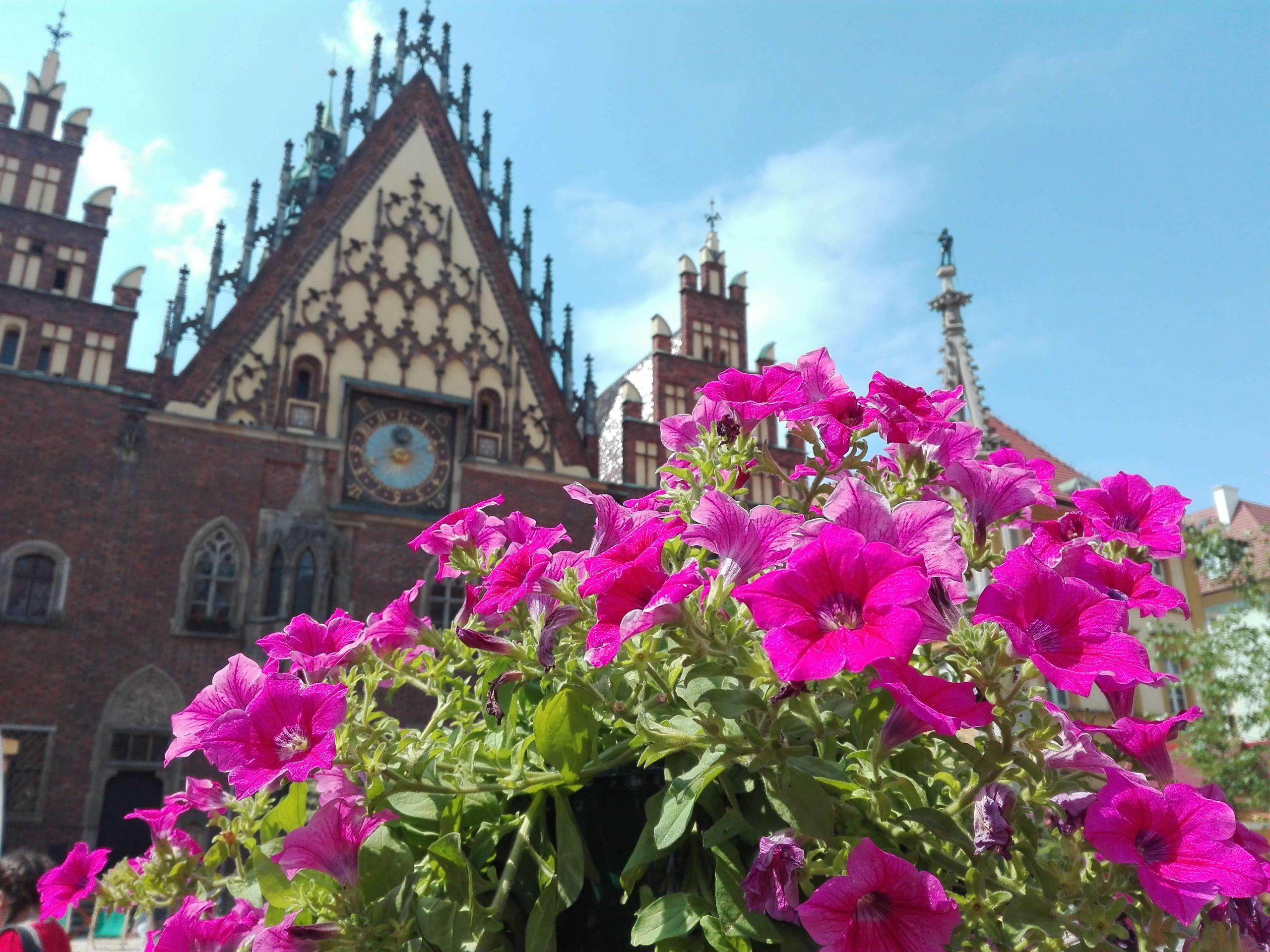 Plaza del ayuntamiento Wroclaw2